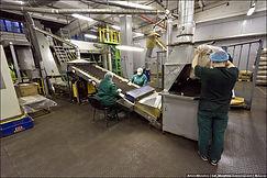 Разнорабочие на промышленный обьект
