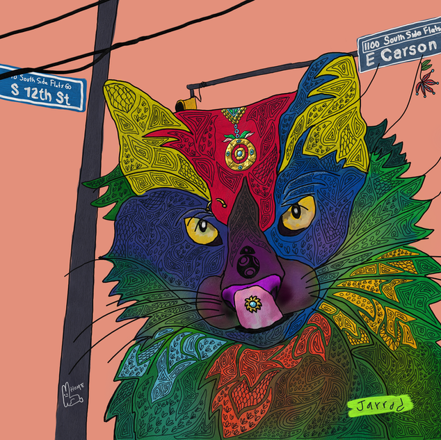 12th Street Cat