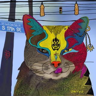 17th street cat