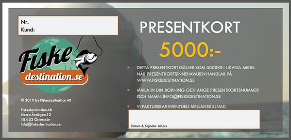 PRESENTKORT 5000.png