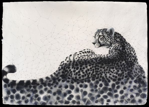 Calculus Cheetah