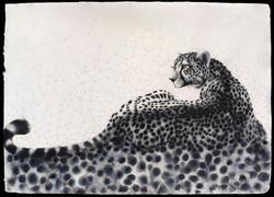 Calculus Cheetah
