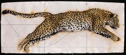 Golden Section Leopard II