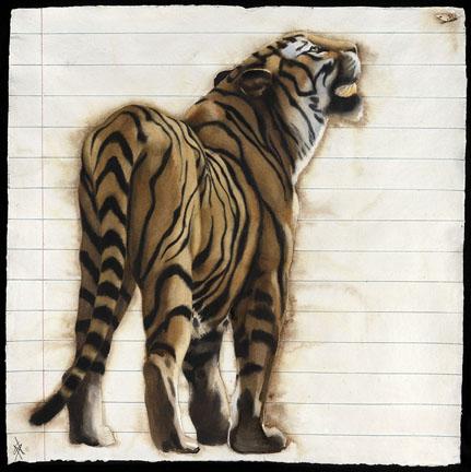 Tiger Moth - Male