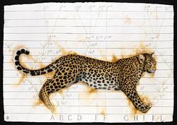 Darwin's Leopard