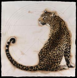 Elliptical Leopard