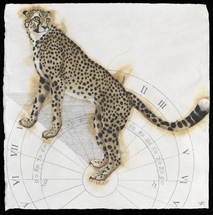 Sundial Cheetah