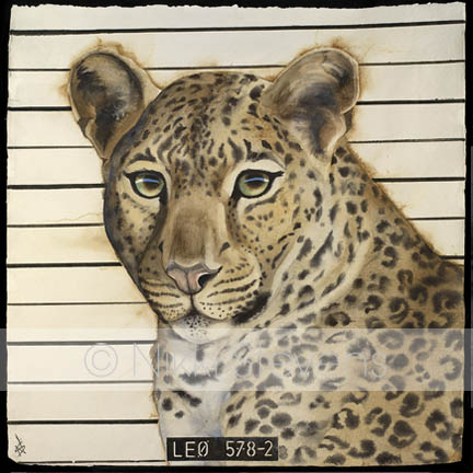 Wanted Leopard