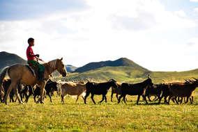 Vida nómada. ©Asier Calderón (todos los derechos reservados)