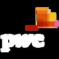 PwC White Logo.png
