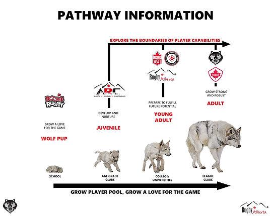 Wolfpack pathway.jpg