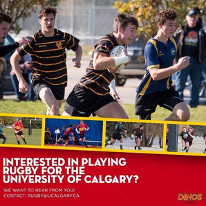 Interested in Playing for the Dinos?