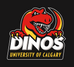 Dinos Men's Rugby Covid-19 Update: