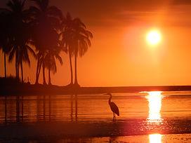sunset villa exotica.JPG
