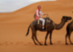 kiri camel.JPG