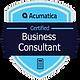 Badge_BusinessConsultant-300x300.png