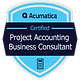 badgeProjectAccountingBusinessConsultant