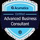 Badge_AdvancedBusinessConsultant-300x300