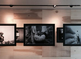 The Congo Exhibition