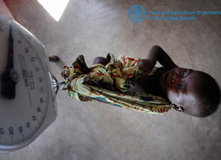 Malawi / UN FAO