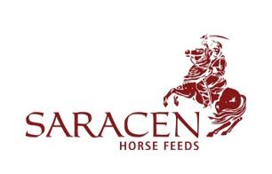 Saracen.png