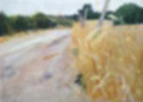 white_track2.jpg