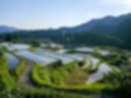 japan-808990_640.jpg