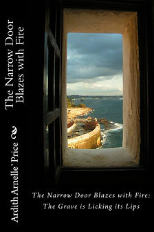 The_Narrow_Door_Blaz_Cover_for_Kindle.jp