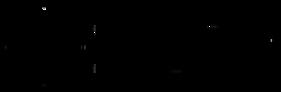 IRVAP_logo_black (2) (1).png