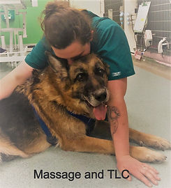 manual therapy and tlc_edited.jpg