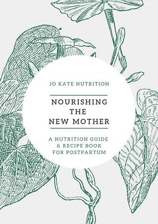 Copy of JKN Nourishing the New Mother eB