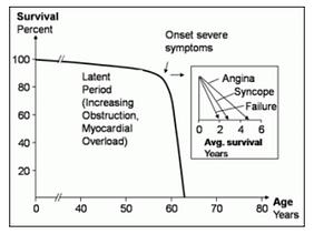 AVS Survival Curve