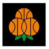 Umeå_basket