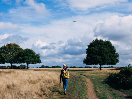 The Benefits of Everyday Walking