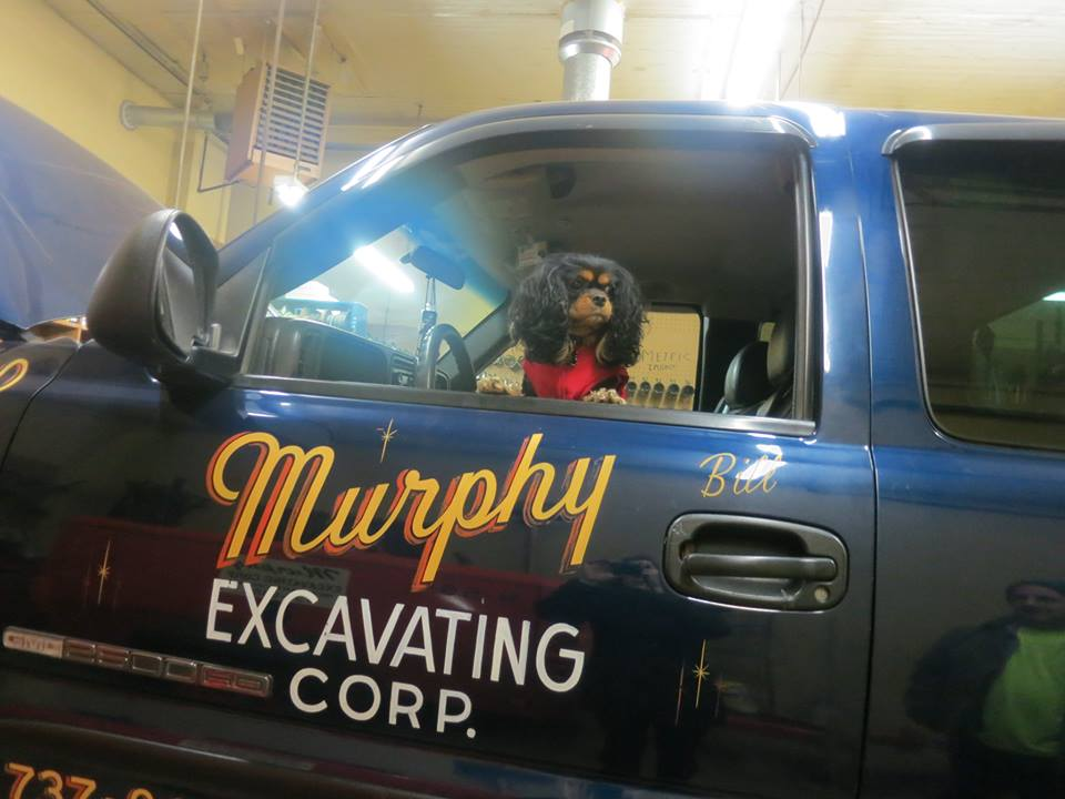 Family Pup visits the shop