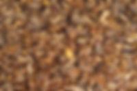 12 Horse Sweet Web.jpg