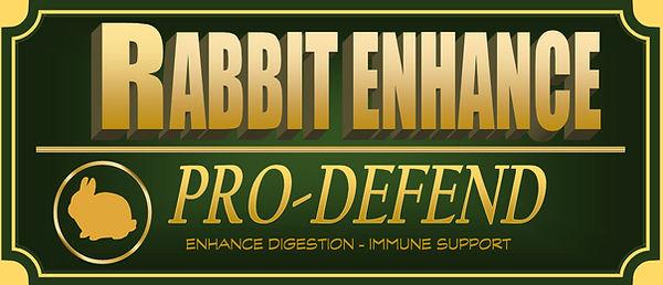 Rabbit Enhance JPEG Web File.jpg