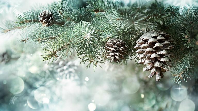 December's Seasonal Menu