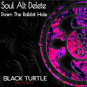 Soul Alt Delete - Down The Rabbit Hole