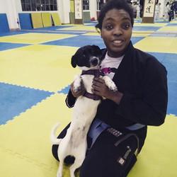 Bjj pup! #bjj #bjjgirls #cutepuppy #shew