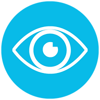 vision-icon.png