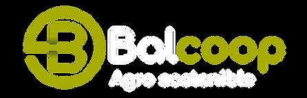 Logo Balcoop.png
