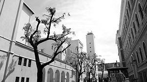 Cluj_Mai2019_IL.JPG