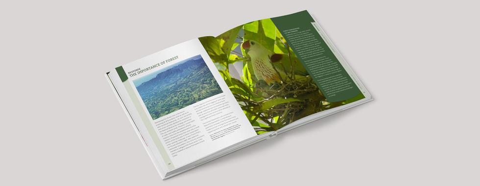 Fiji State of Birds 2.jpg