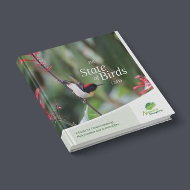 Fiji: State of Birds