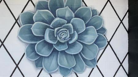 Succulents Rooftop Mural