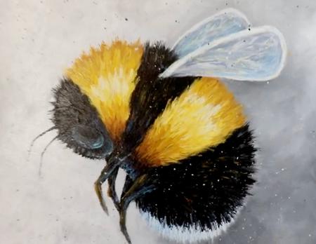 """Bumble Bay-bee"""