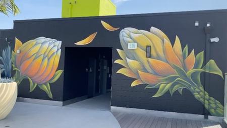 Succulent Rooftop Mural