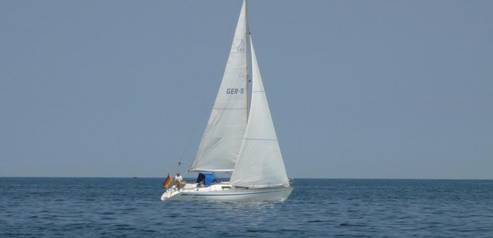 Excel 319 am Wind.JPG