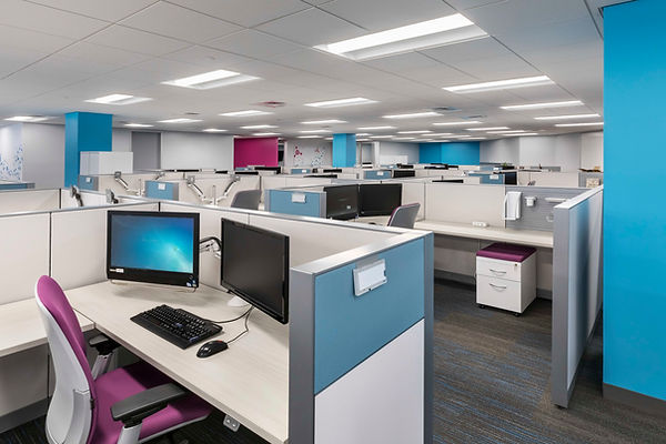Office cubicles with blue and red colors